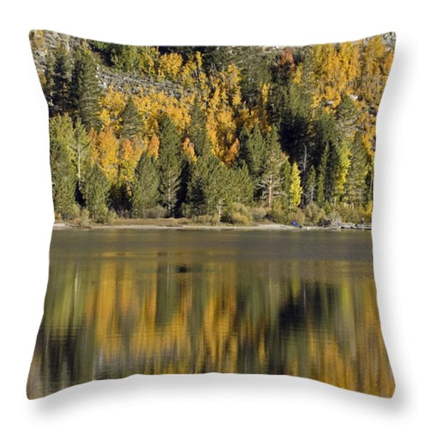 Fall Color Reflection And Tree Throw Pillow by Rich Reid