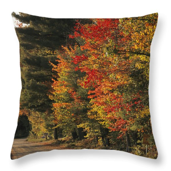 Fall Colors Line A New England Road Throw Pillow by Heather Perry