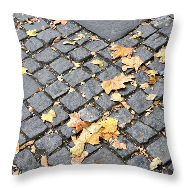 FALL CROSSROADS Throw Pillow by JAMART Photography