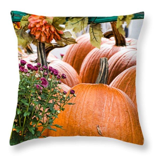 Fall Display Throw Pillow by Edward Sobuta