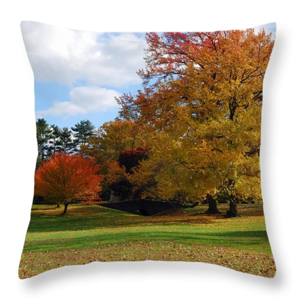 Fall Foliage Throw Pillow by Lisa  Phillips