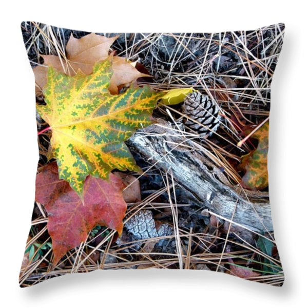Fall Forest Floor Throw Pillow by Will Borden