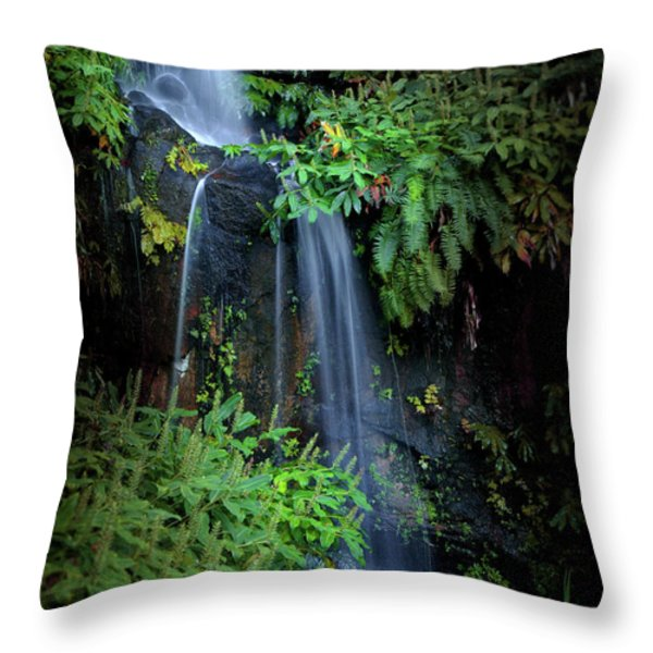 Fall in Eden Throw Pillow by Carlos Caetano