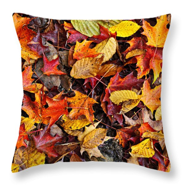Fall leaves background Throw Pillow by Elena Elisseeva