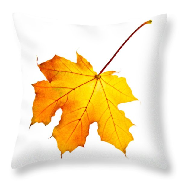 Fall maple leaf Throw Pillow by Elena Elisseeva