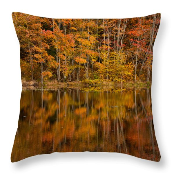 Fall Reflection Throw Pillow by Karol Livote