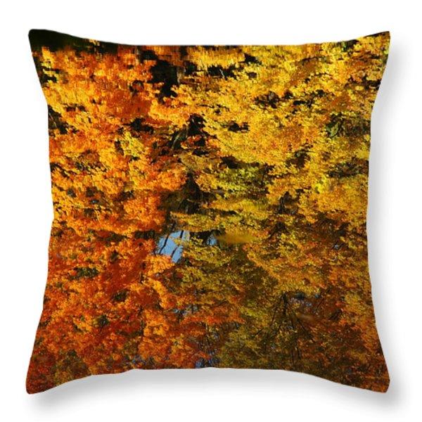 Fall Textures In Water Throw Pillow by LeeAnn McLaneGoetz McLaneGoetzStudioLLCcom