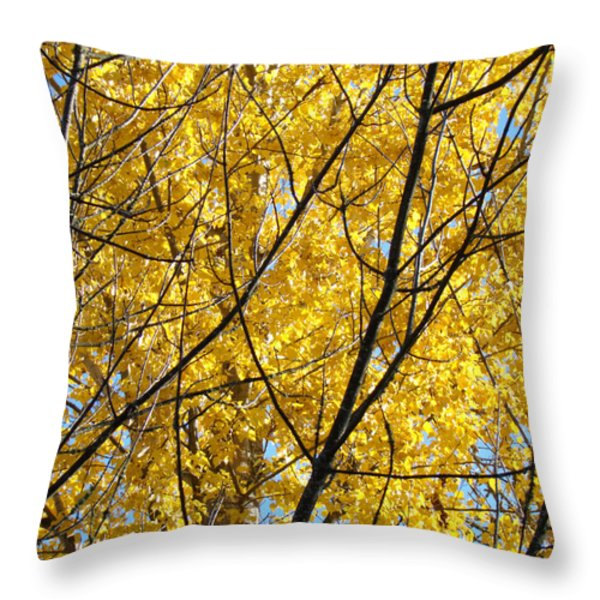 Fall Trees art prints Yellow Autumn Leaves Throw Pillow by Baslee Troutman Fine Art Photography