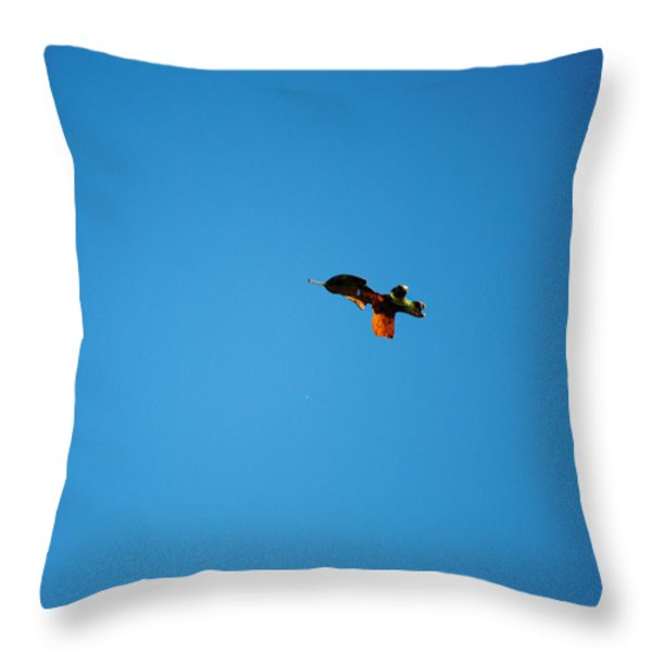 Falling Leaf Throw Pillow by Jai Johnson