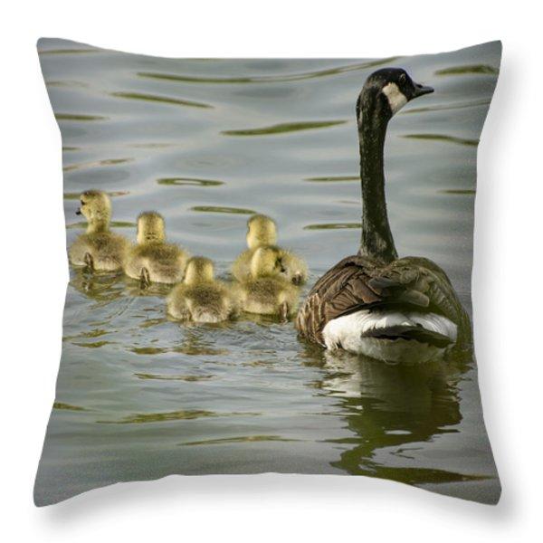 Family Swim Throw Pillow by Heather Applegate