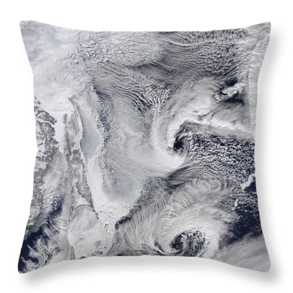 Far Eastern Russia Covered In Snow Throw Pillow by Stocktrek Images