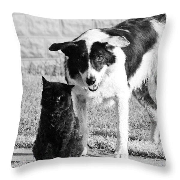 Farm Cat and Border Collie Throw Pillow by Thomas R Fletcher