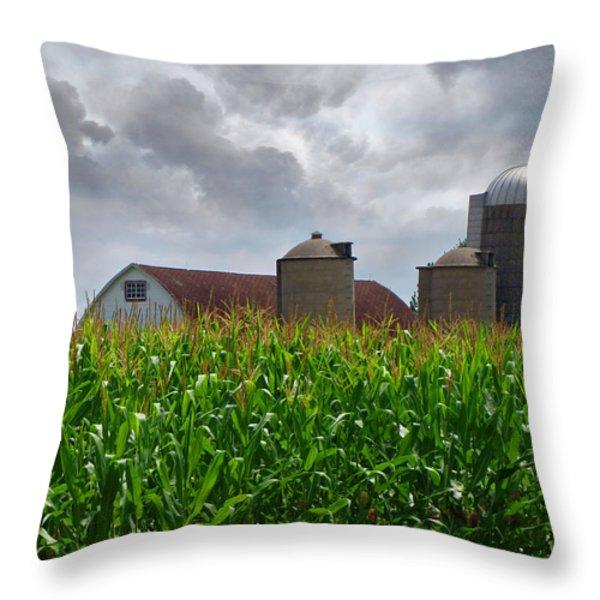 Farm Landscape Throw Pillow by Ms Judi