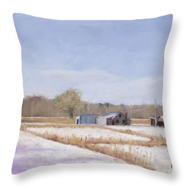 Farmland In Winter  Concord Massachusetts Throw Pillow by Mark Pimentel