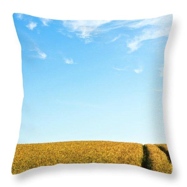 Farmland To The Horizon 1 Throw Pillow by Heiko Koehrer-Wagner