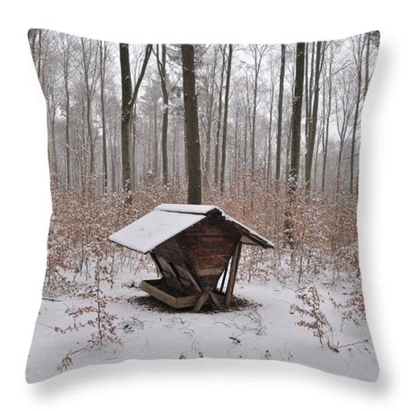 Feed box in winterly forest Throw Pillow by Matthias Hauser
