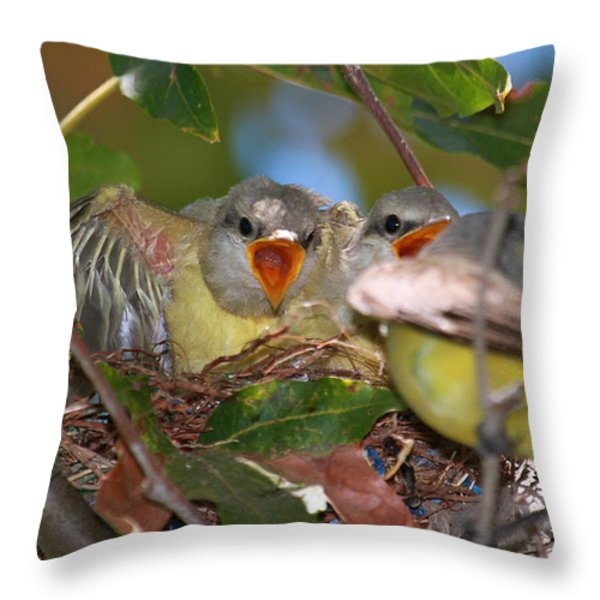 Feed Me Throw Pillow by Paul Marto