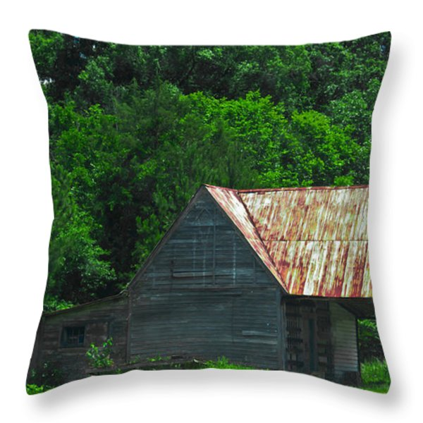 Feed Stand Throw Pillow by Scott Hervieux