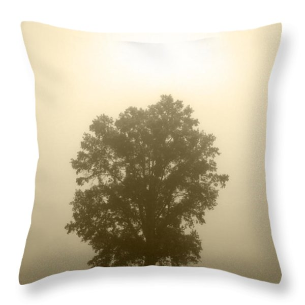 Feeling Small 2 Throw Pillow by Amanda Barcon