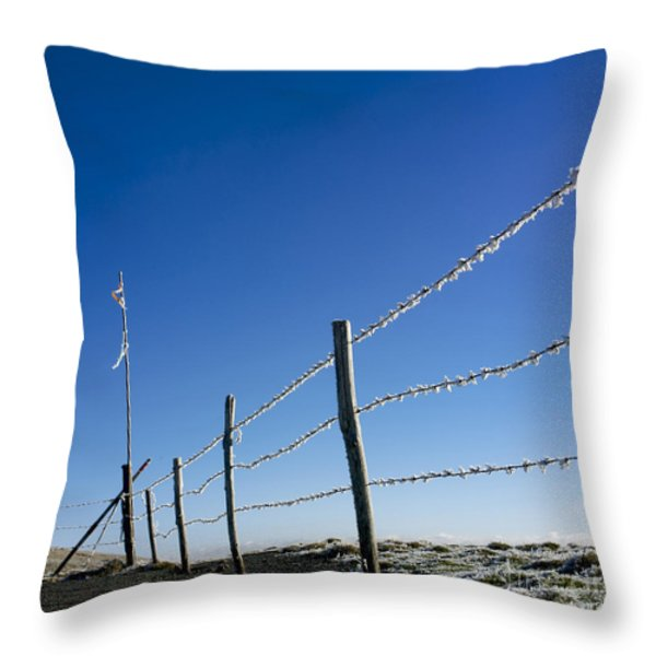 Fence covered in hoarfrost in winter Throw Pillow by BERNARD JAUBERT