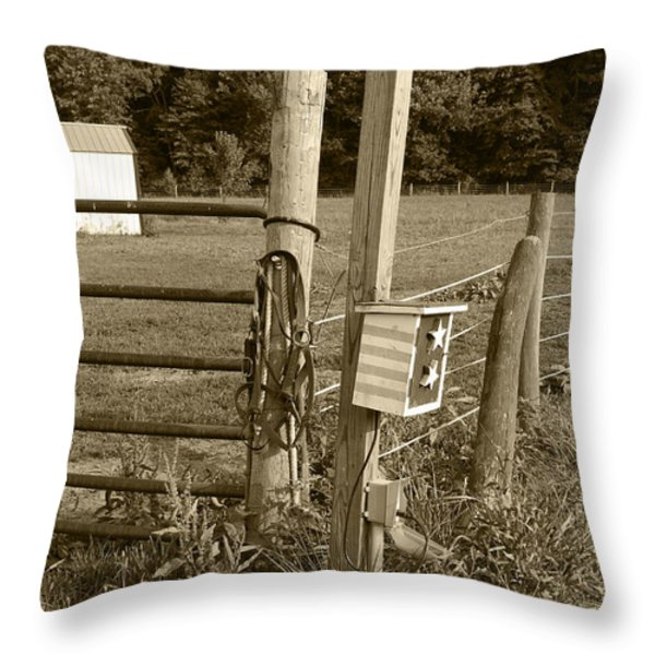 Fence Post Throw Pillow by Jennifer Lyon