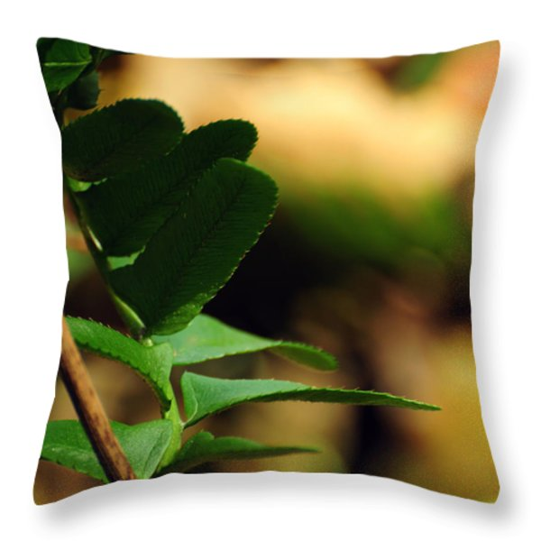 Fern Curve Throw Pillow by Rebecca Sherman