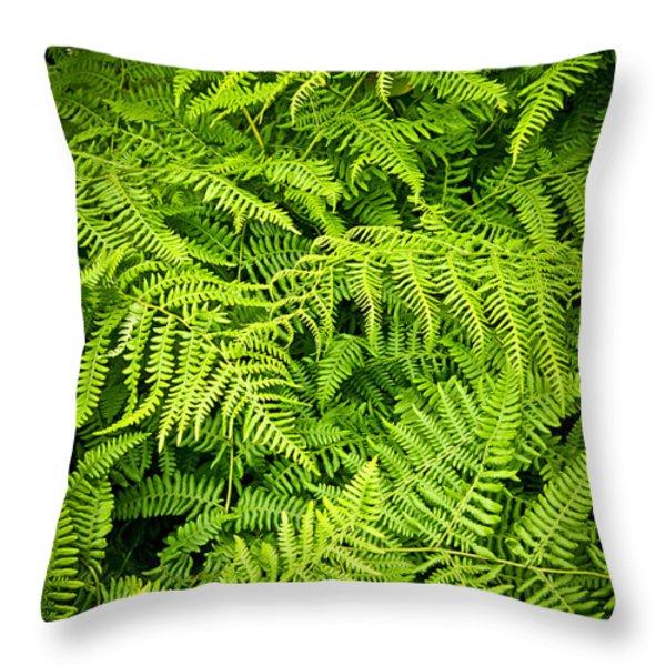Fern Throw Pillow by Elena Elisseeva
