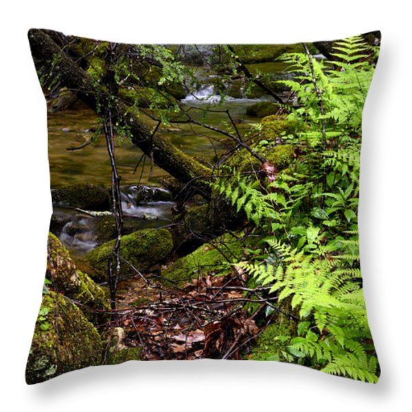 Fern Fallen Log And Stream Throw Pillow by Thomas R Fletcher