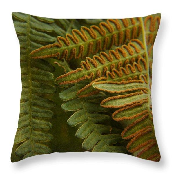 Fern In My Garden Throw Pillow by Bonnie Bruno