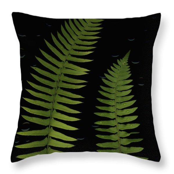 Fern Leaves With Water Droplets Throw Pillow by Deddeda