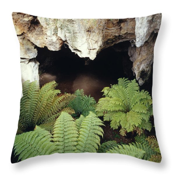 Ferns Growing In The Gaping Mouth Throw Pillow by Jason Edwards