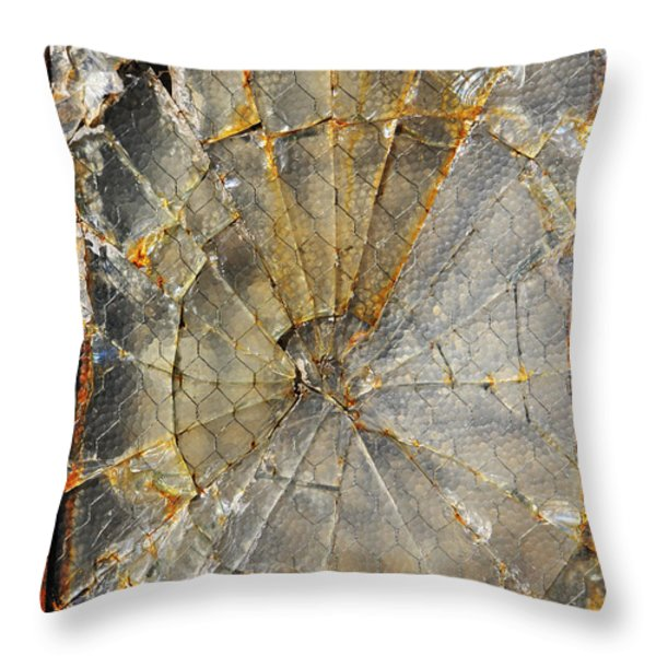 Fibonaccis Muse Throw Pillow by Skip Hunt