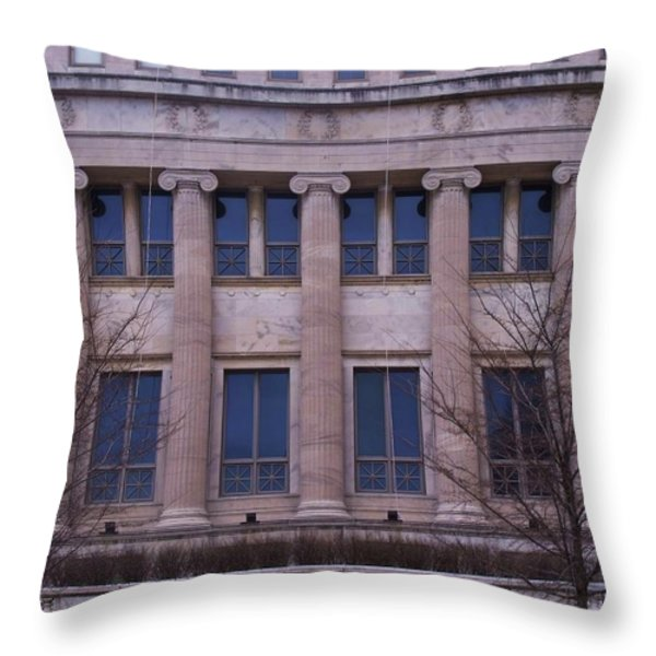 Field Museum Throw Pillow by Anna Villarreal Garbis