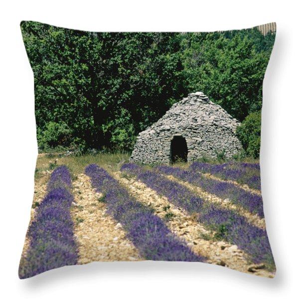 Field of lavender. Sault Throw Pillow by BERNARD JAUBERT