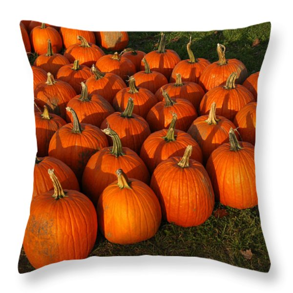 Field Of Pumpkins Throw Pillow by LeeAnn McLaneGoetz McLaneGoetzStudioLLCcom