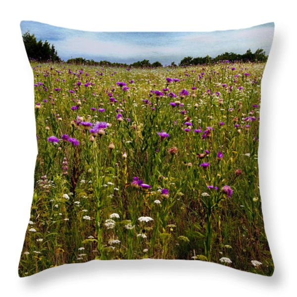 Field Of Thistles Throw Pillow by Tamyra Ayles