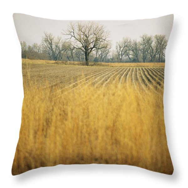 Fields At The Lillian Annette Rowe Bird Throw Pillow by Joel Sartore