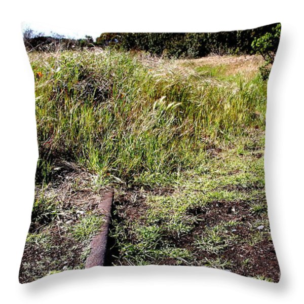 Final Stop . 7d15028 Throw Pillow by Wingsdomain Art and Photography