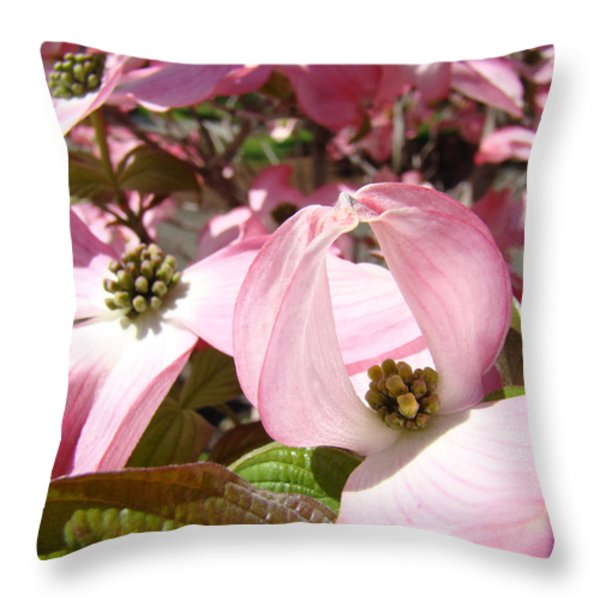 Fine Art Prints Pink Dogwood Flowers Throw Pillow by Baslee Troutman Fine Art Photography