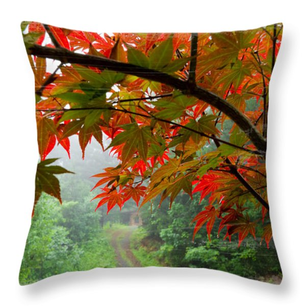 Fire Fog Throw Pillow by Debra and Dave Vanderlaan