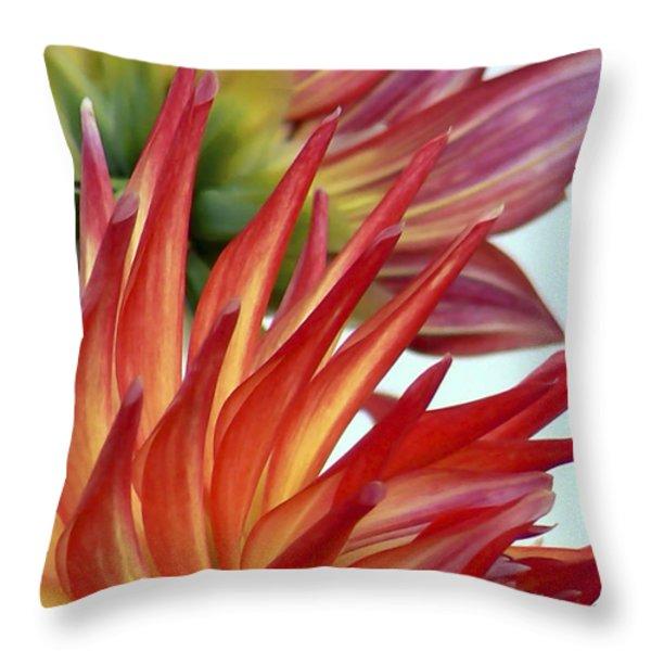 Firecracker Dahlia Throw Pillow by Pamela Patch