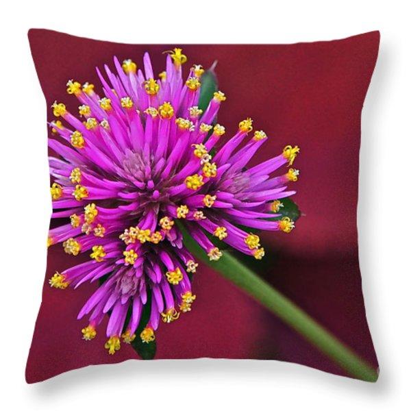 Fireworks Flower Throw Pillow by Byron Varvarigos
