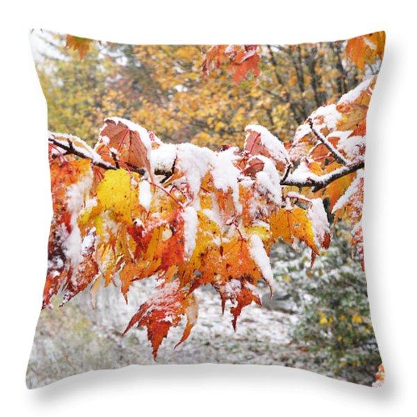 First Snow Throw Pillow by Thomas R Fletcher