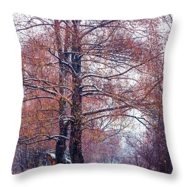First Snow. Winter Coming Throw Pillow by Jenny Rainbow