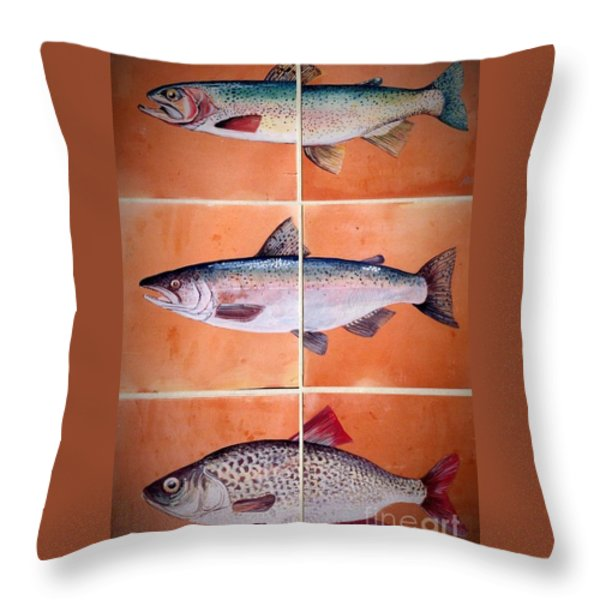 Fish Mural On Terracotta Tiles Throw Pillow by Andrew Drozdowicz