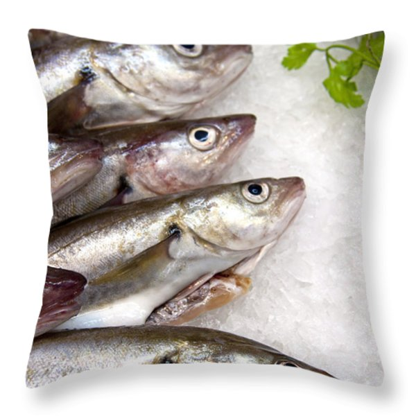 Fish on ice Throw Pillow by Jane Rix