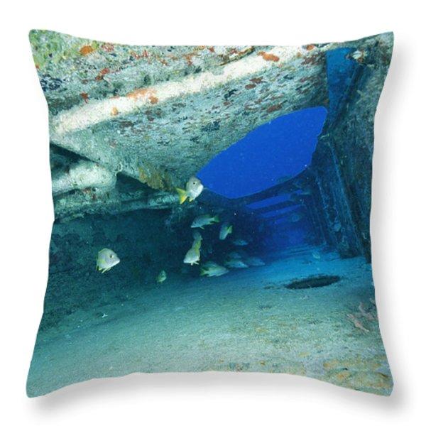 Fish Swimming In Shipwreck, Tortola Throw Pillow by Joe Stancampiano