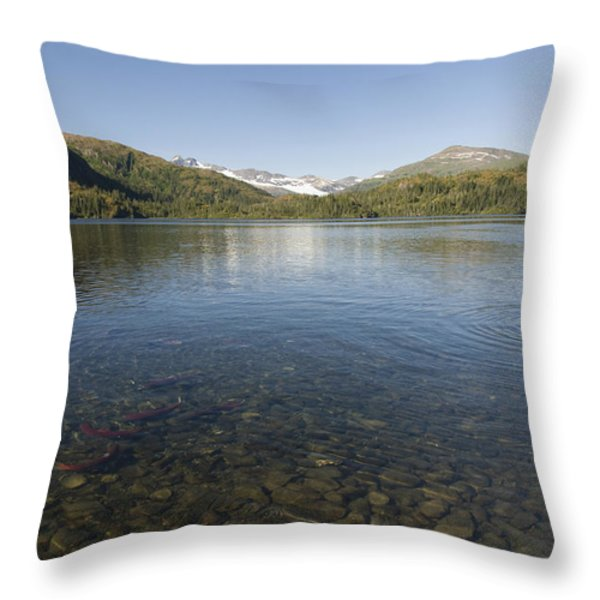 Fishing At Shrode Lake Throw Pillow by Gloria & Richard Maschmeyer