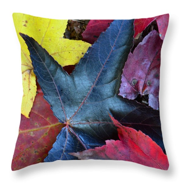 Five Fall Leaves Throw Pillow by Sandi OReilly