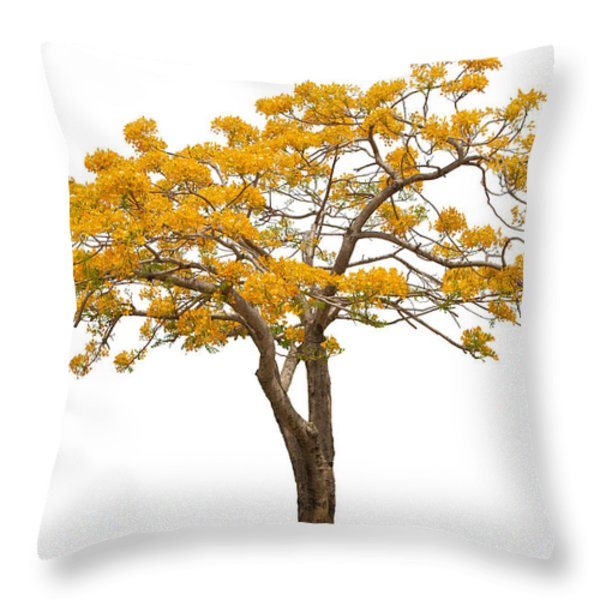 Flam Of The Forest Throw Pillow by Atiketta Sangasaeng